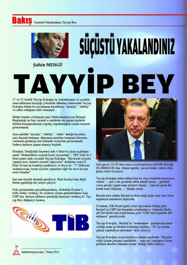 Haber Revizyon Nisan 201452