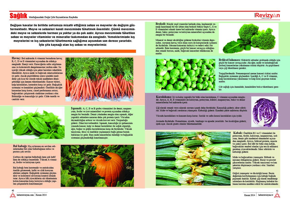 Haber Revizyon 2014 KASIM sebzeler ve meyveler 2