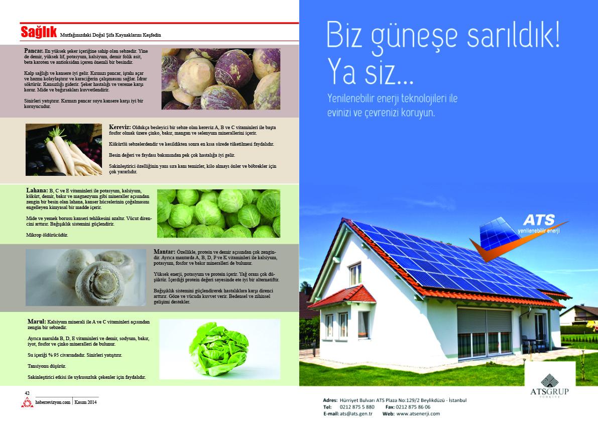 Haber Revizyon 2014 KASIM sebzeler ve meyveler 3