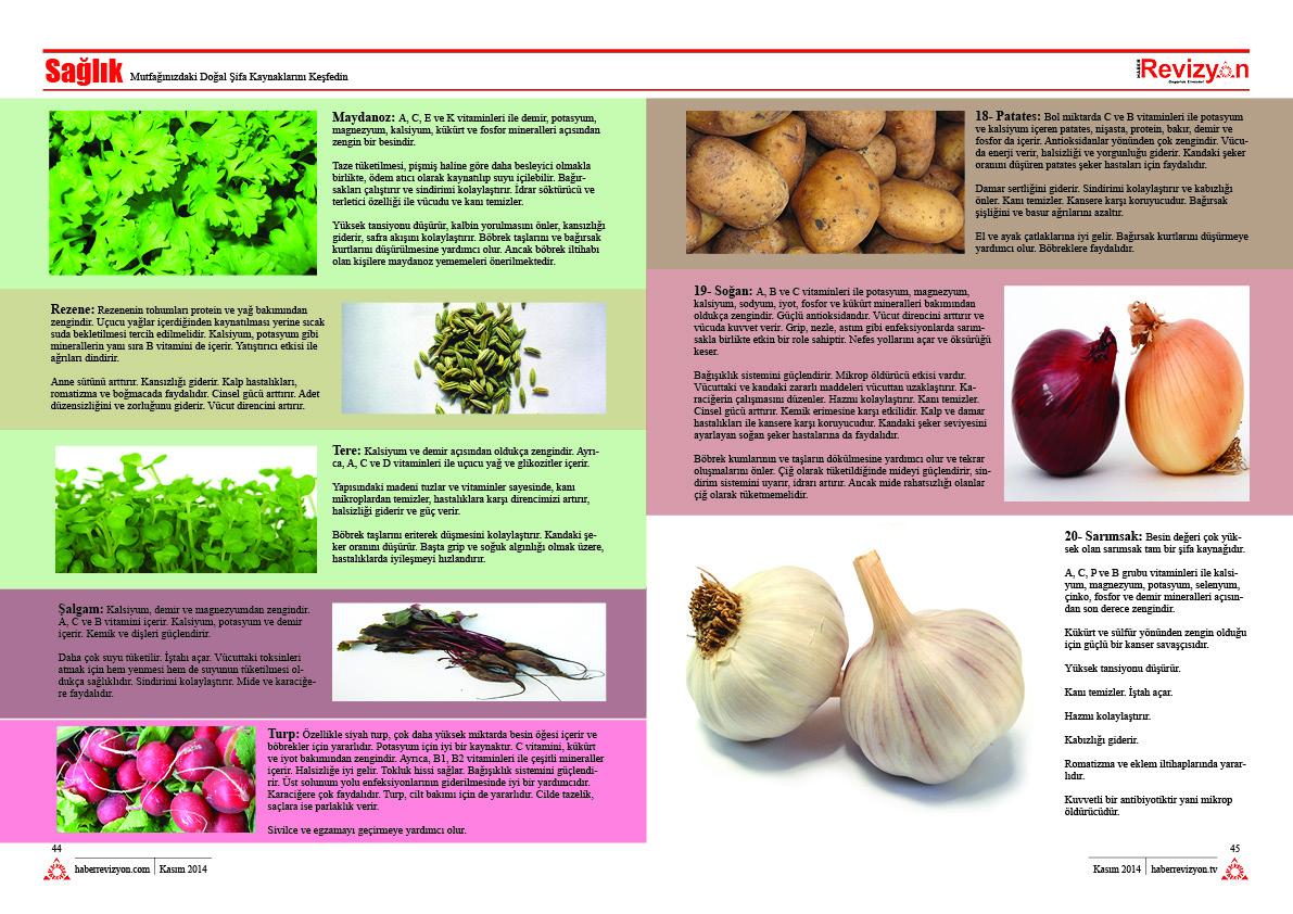 Haber Revizyon 2014 KASIM sebzeler ve meyveler 4