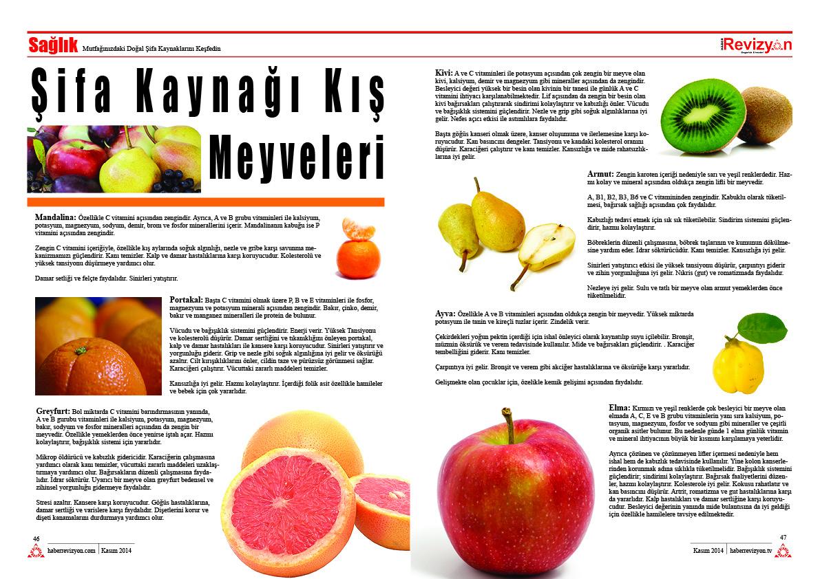 Haber Revizyon 2014 KASIM sebzeler ve meyveler 5